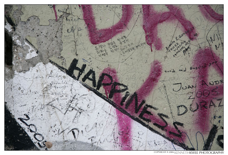 Series: The Wall (Happiness)